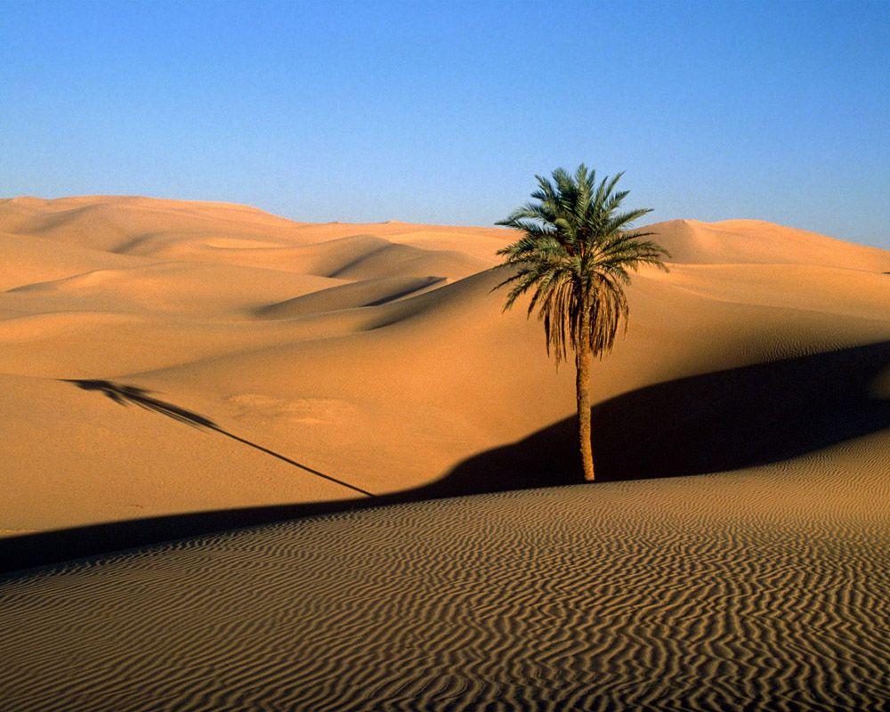 Atunci cand desertul Sahara era o regiune verde si roditoare Atunci cand desertul Sahara era o regiune verde si roditoare desertul sahara