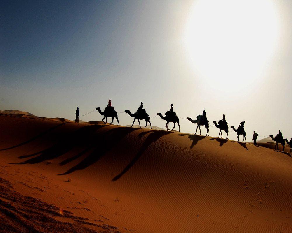 Atunci cand desertul Sahara era o regiune verde si roditoare Atunci cand desertul Sahara era o regiune verde si roditoare sahara desert1