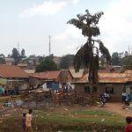 uganda (february 2015) Uganda (February 2015) DSCN8139 150x150