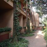 uganda (february 2015) Uganda (February 2015) DSCN8175 150x150