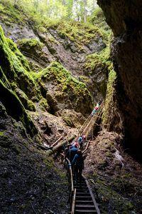 Scarisoara - Cristi Oxigen a găsit Paradisul în Munții Apuseni Oxigen a găsit Paradisul în Munții Apuseni Scarisoara Cristi 200x300