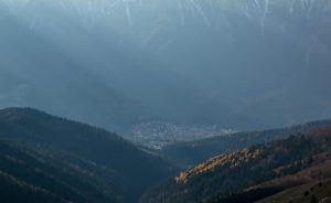 9 Importanța împăduririlor și necesitatea lor în România Importanța împăduririlor și necesitatea lor în România 9 300x184